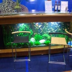 Furniture Aquarium